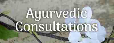 Ayurvedic Consultations