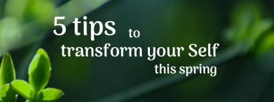 5 tips spring